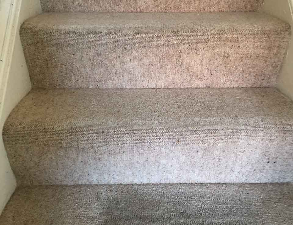 Residential Hall, Stairs and Landing Carpet Clean